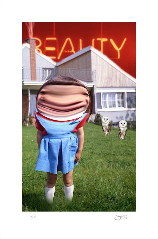 Scott Lickstein - Beauty or Reality - 2011